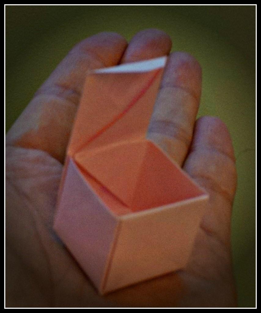 Koji Origami