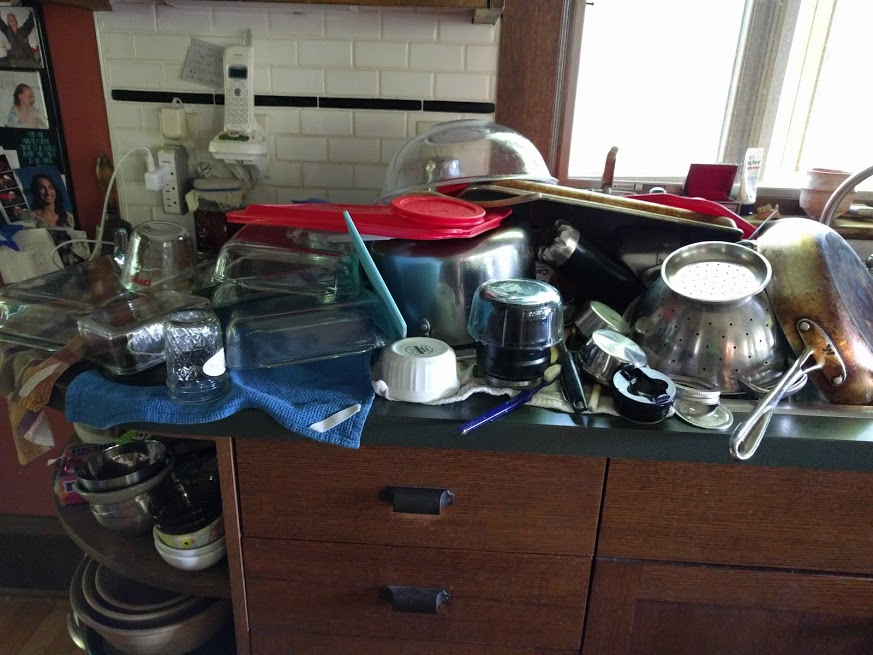 I mean, what the holy. What kind of dipshit family of four can create this many dirty dishes in under 24 hours?